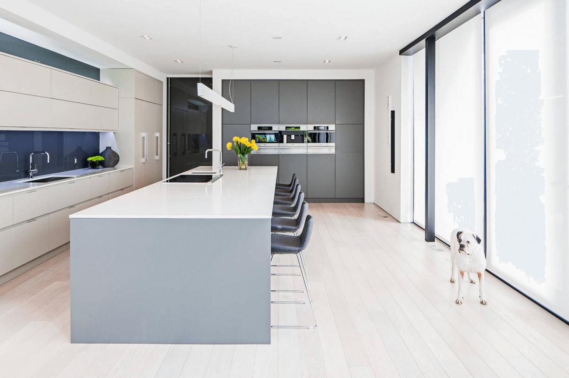 cozinha minimalista com piso de madeira clara e bulldog na foto
