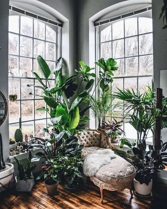 Um Novo Ano, Uma nova Casa. Nós Compartilhamos Com Você Nossas Maiores Apostas Para 2019.