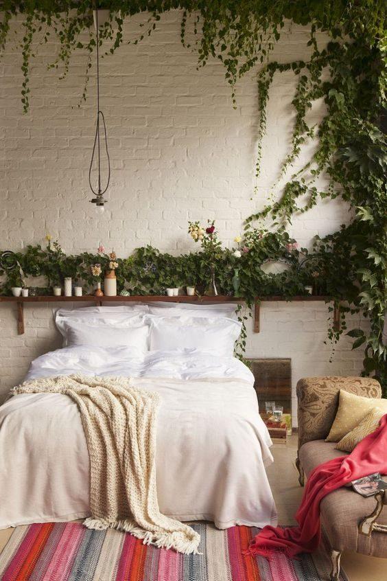 floresta urbana em dormitório com trepadeiras na parede.