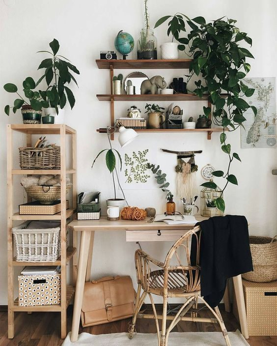 plantas pendentes formando floresta urbana em escritório