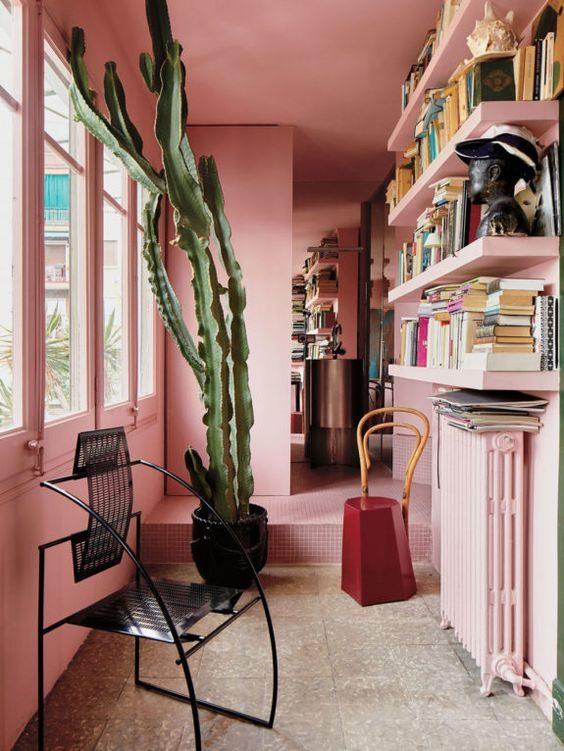 paredes e prateleiras rosa