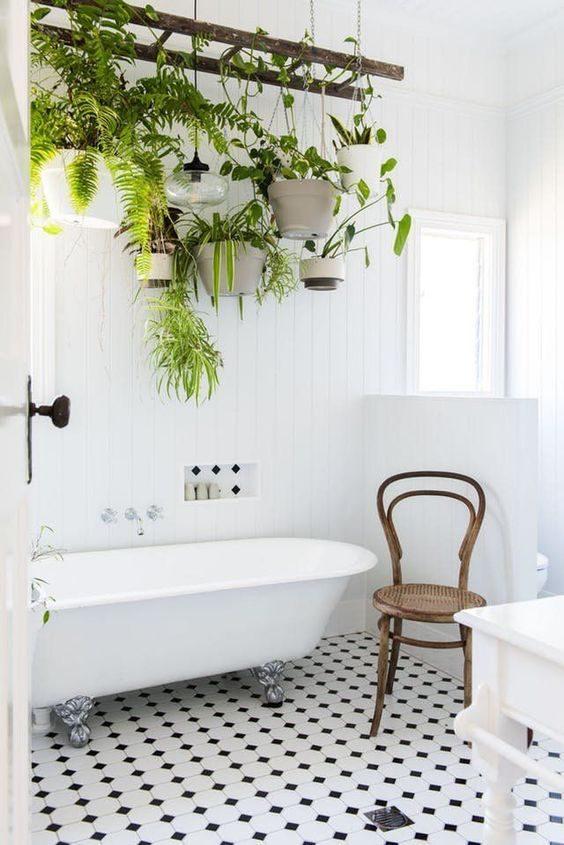 banheiro decorado por samambaias suspensas