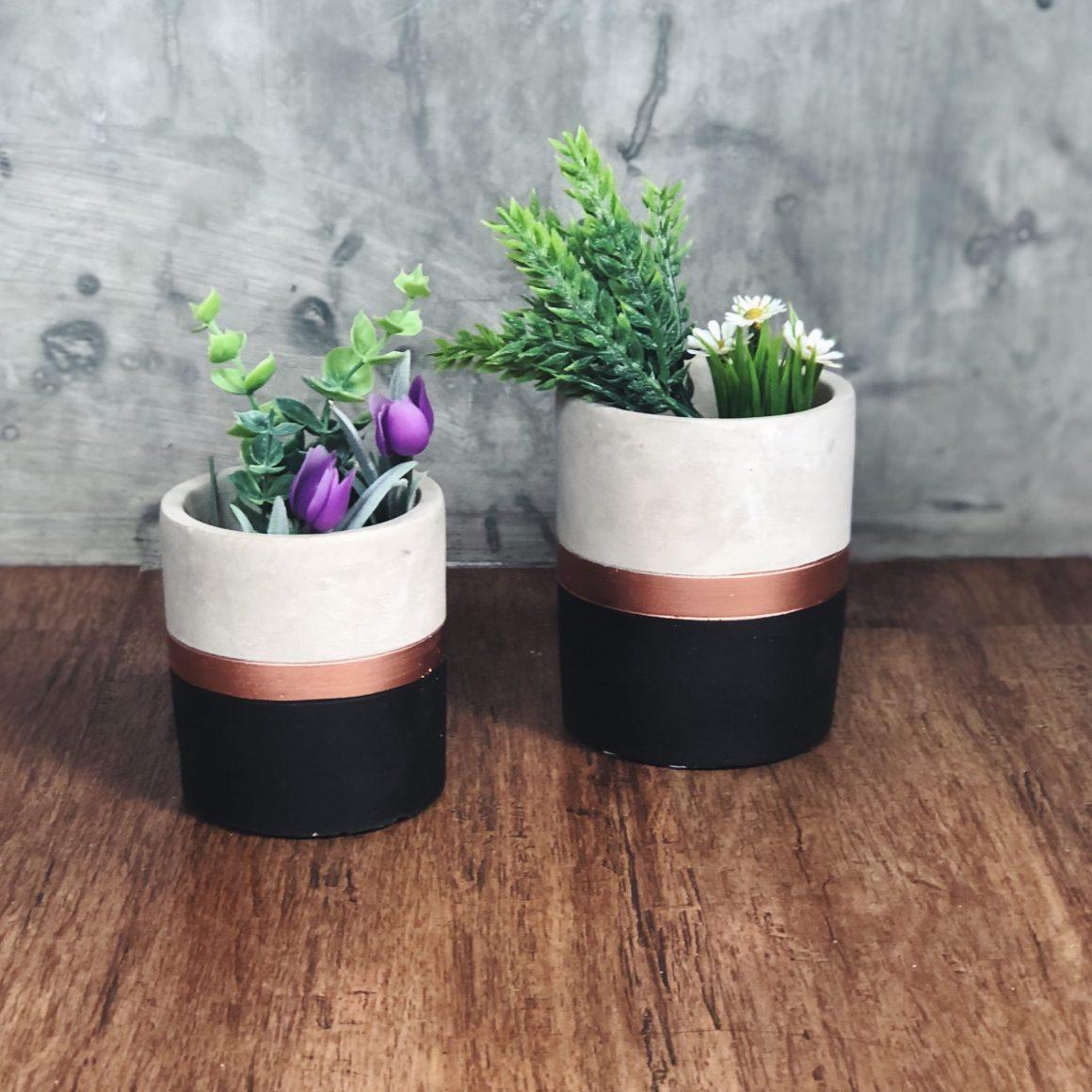 vasos de cimento com faixa bronze