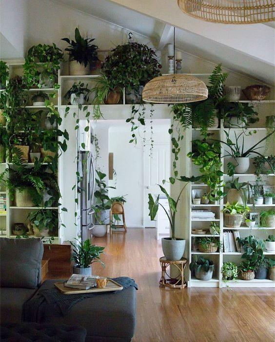 floresta urbana em estande.