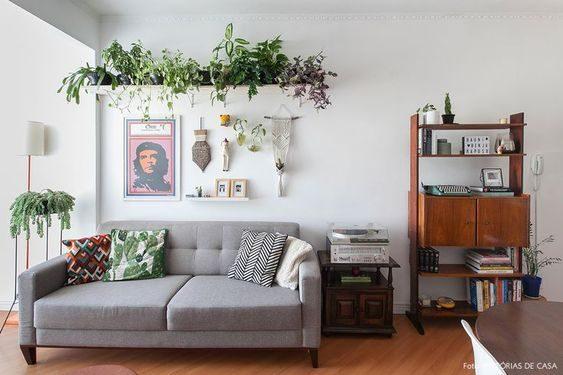 prateleira suspensa cheia de samambaias em sala de estar