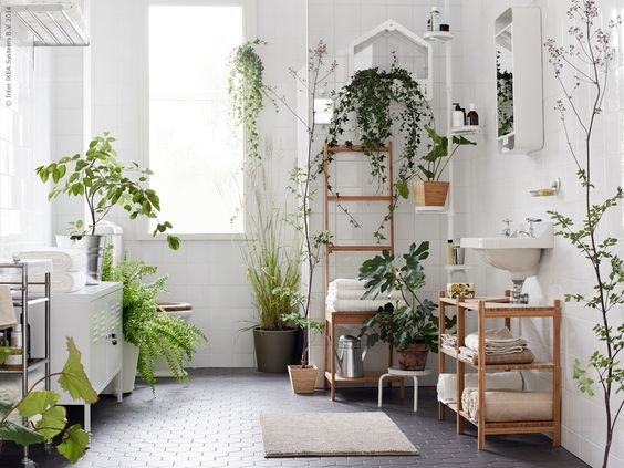 floresta urbana no banheiro