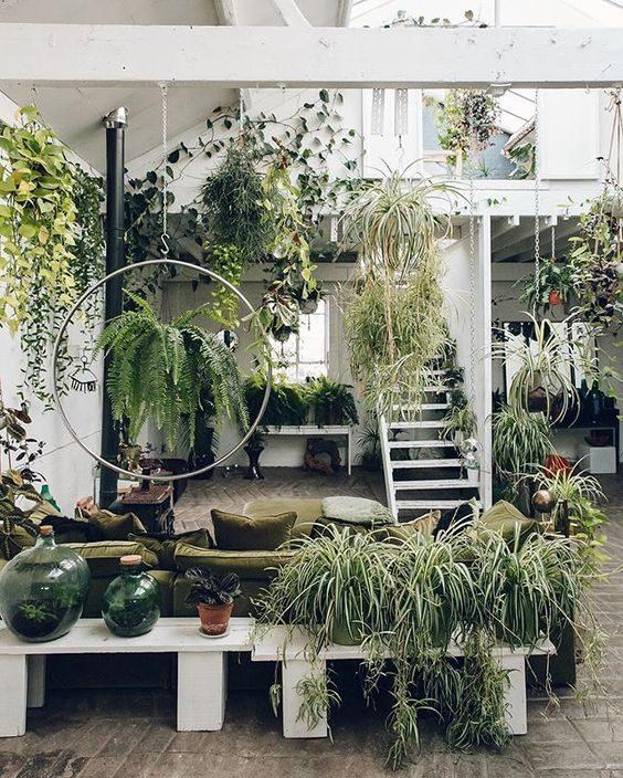varanda com decoração feita totalmente com samambaias