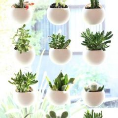 Jardim Pequeno: 6 Soluções Para Maximizar O Espaço E O Estilo