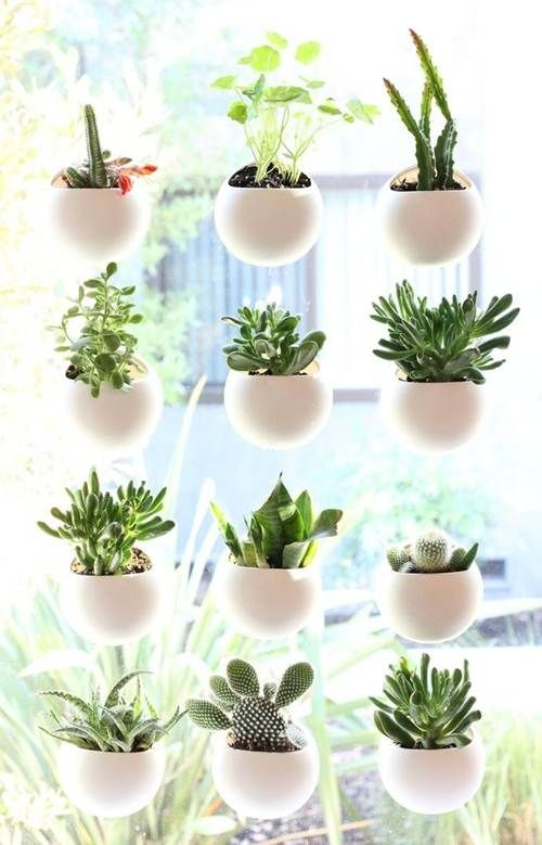 jardins urbanos pequenos