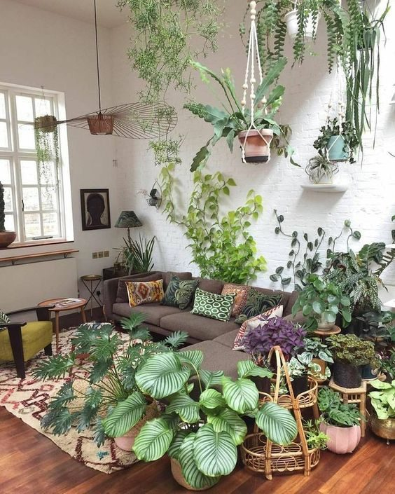 sala de estar no estilo floresta urbana, cheia de folhagens.