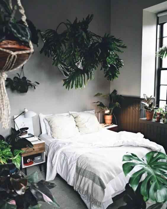 dormitório com vegetação pendurada no estilo floresta urbana.