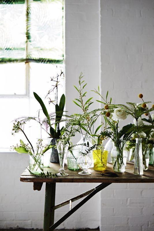 vasinhos de vidro reutilizados na floresta urbana.